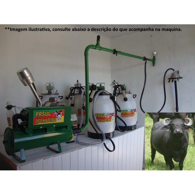 Ordenhadeira fixa com 4 conjuntos com capacidade de expansão para até 6 búfalas