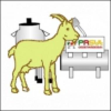 Ordenhadeira fixa com 1 conjunto para cabras