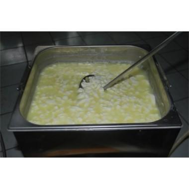 Tanque para queijo que processa até 15 lt de leite- Modelo simples